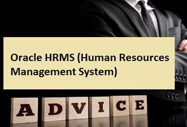 Oracle HRMS (Human Resources Management System)